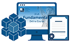 Fundamentals Online Course